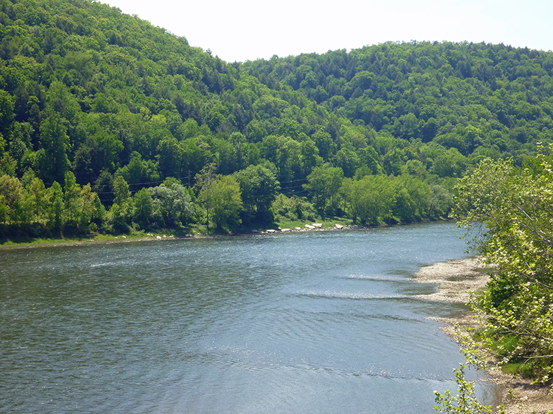 Sandy-Creek-Trail-05-19-2012-vincent-troia-6.jpg