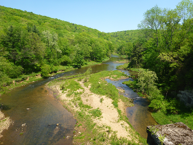 Sandy-Creek-Trail-05-19-2012-copyright-vincent-troia22.jpg