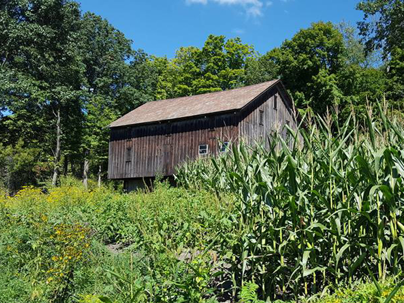 Stavich-Trail-Barn-2016-Greg.jpg